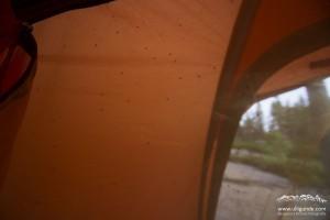 Soo viele Mücken