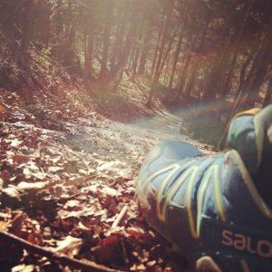 Parade-Instagram-Foto. Klassischer gehts ja wohl nicht! #salomon #running #trailrunning :)