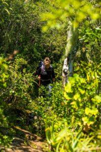 Amatola Trail Trekking Südafrika