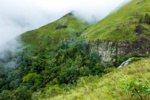 Trekking Natur Urwald