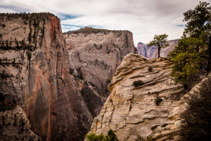 Fotomotive im Zion National Park - Observation Point
