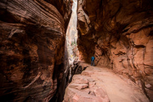 Durch Canyons zum Observation Point im Zion National Park