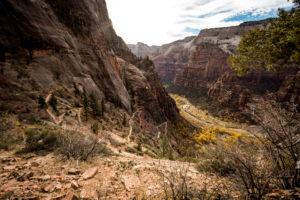 In Serpentinen führt die Wanderung zum Observation Point im Zion National Park