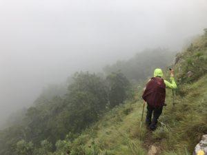 Steile Grasflanke in Südafrika