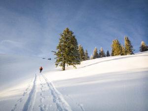 Skitour Nagelfluhkette Spuren